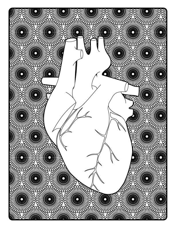 Zen Coloring Anatomy Printable Adult Book Pages PDF