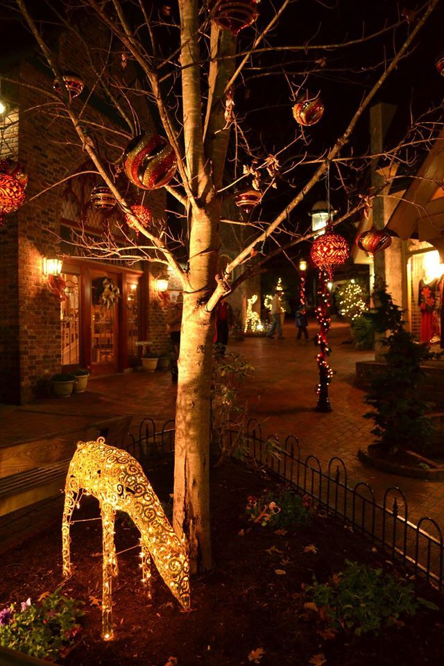 The Smoky Mountain Winterfest lights and decorations can\u0027t be beat