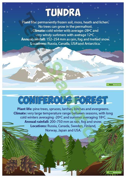 Terrestrial Ecosystem Posters Teaching Resources – Teach Starter ...