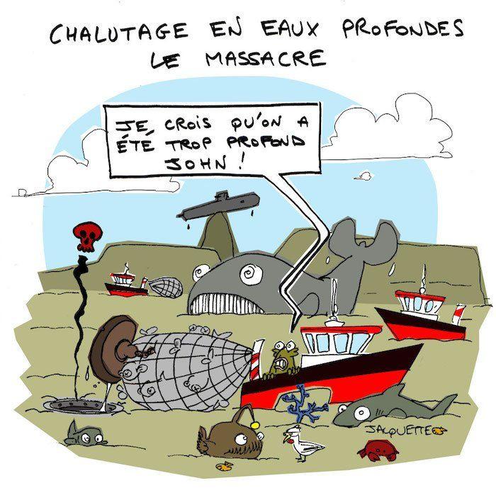 LeCrapaud.fr : le site qui bouscule l'actualité écologiste
