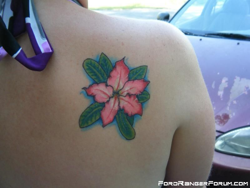 Desert Rose Ink With Images