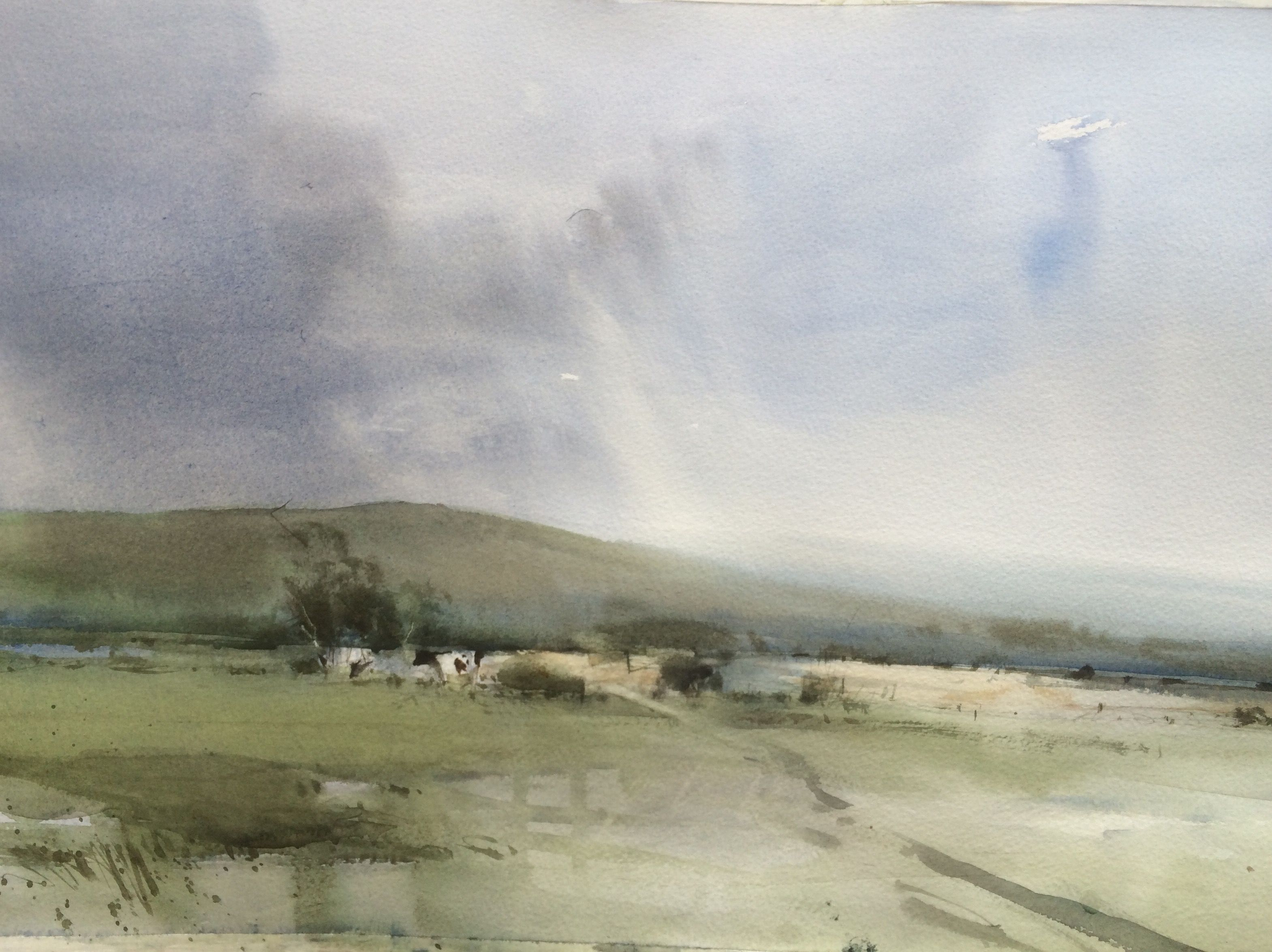 In the Chilterns by Chris Robinson