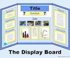 science fair board good for any kind of presentation kids and