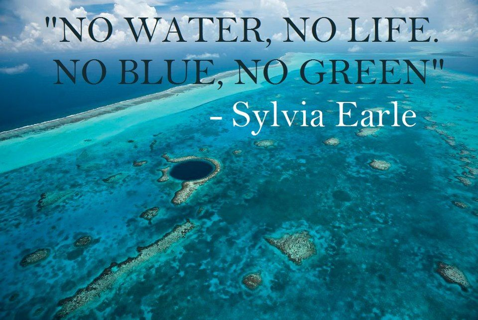 We love this quote and we love Sylvia Earle and her