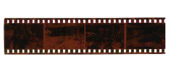 35mm Negative Film Slides Negatives Old Photos And Albums