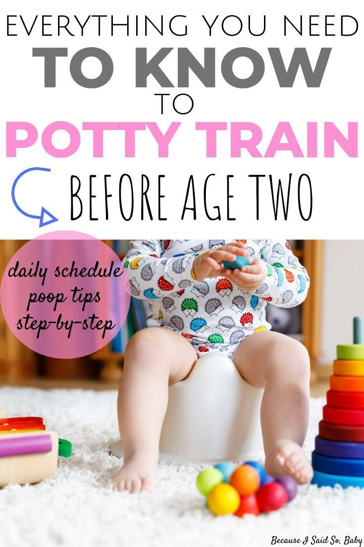 Potty Training Under 2 Everything You Need To Know Potty