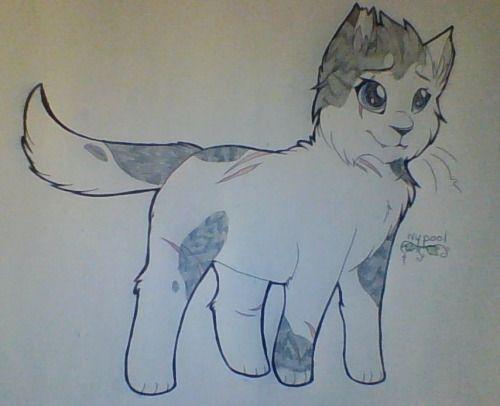 Pin By Elaina On Warrior Cats Sketches Warrior Cats Art