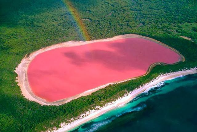 Pink Colored Lake Hillier in Australia