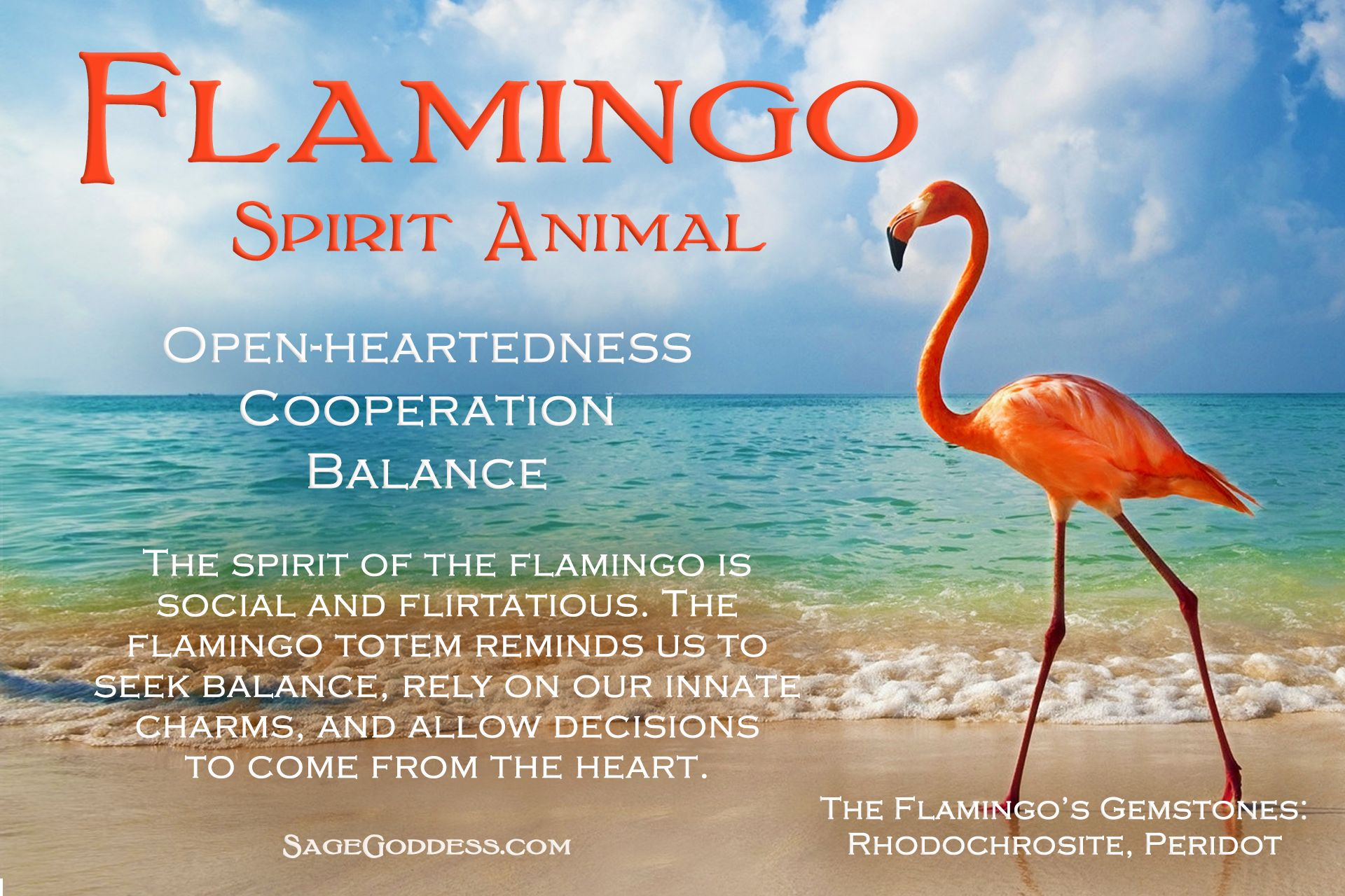 Flamingo Sprit Animal My Favorite Things Anima