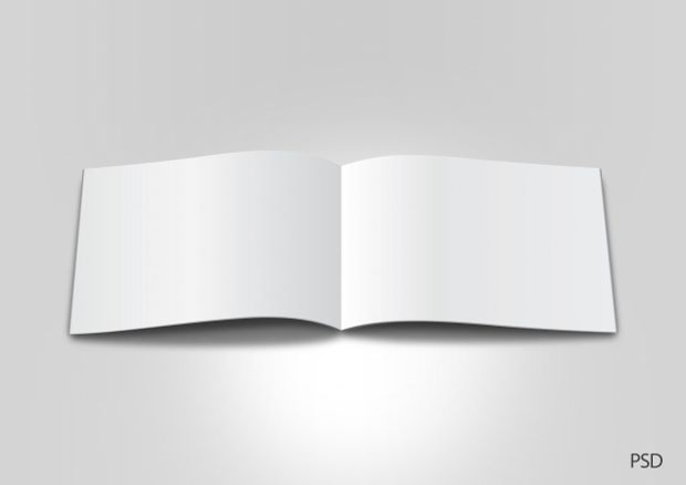 This blank brochure design can be quite ideal for use in your - blank brochure template