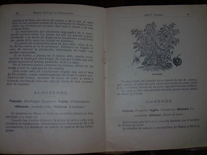 Dalton 2011 manual