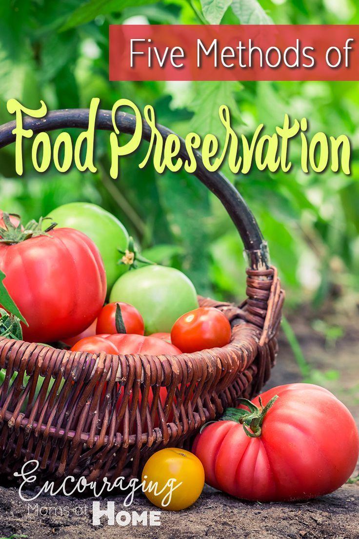 Five Methods of Food Preservation Methods of food