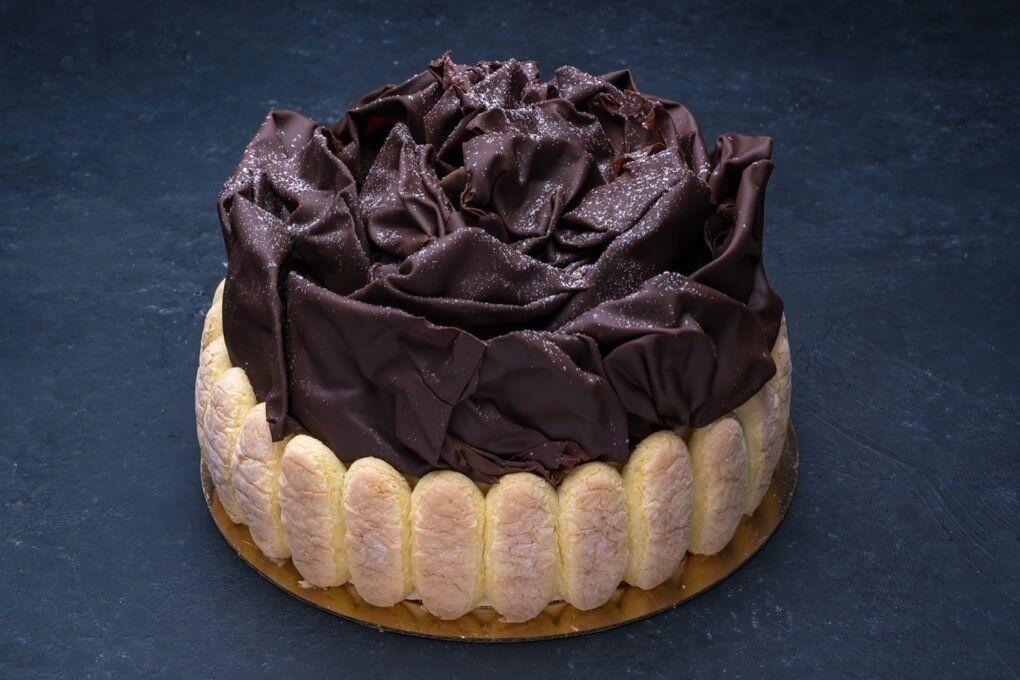 Opera cake 8x 8 portos bakery cake chocolate