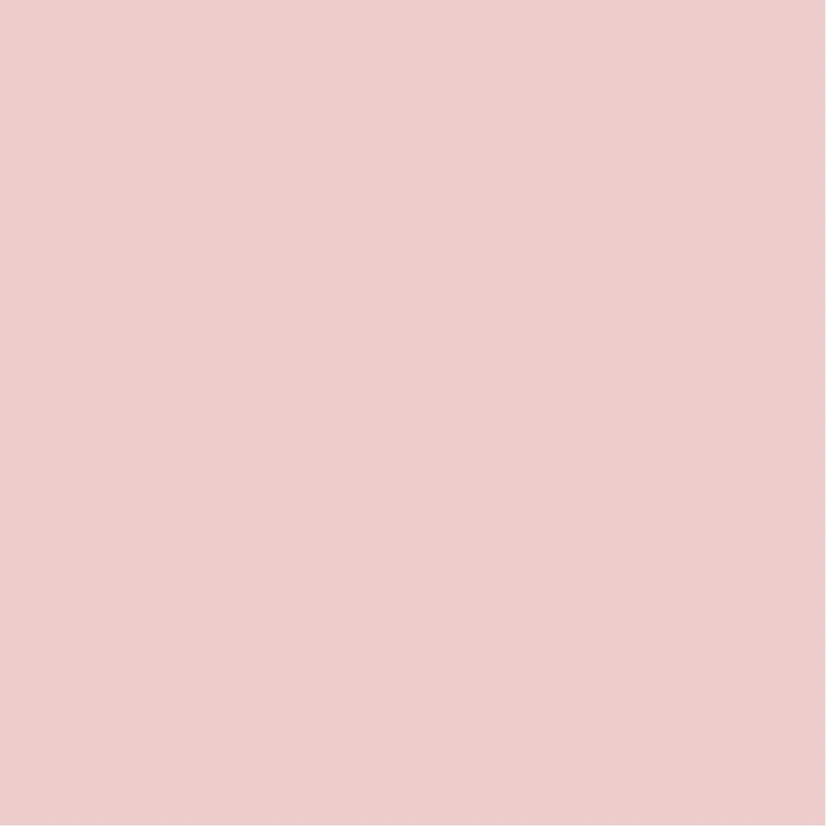 15 Solid Soft Warm Neutrals Instagram Highlight Cover