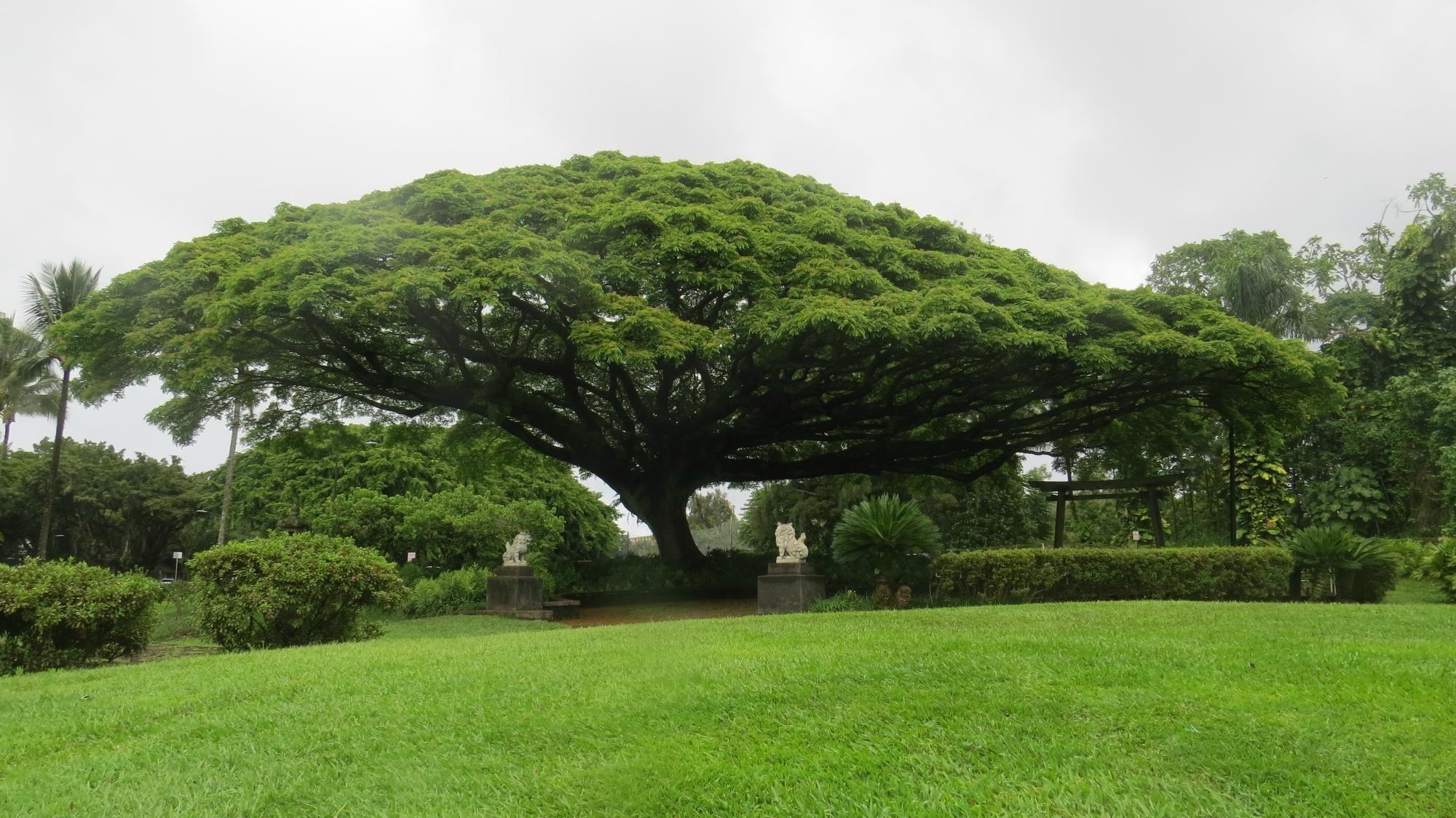 Queen Liliuokalani Gardens (Hilo, HI) Address, Phone