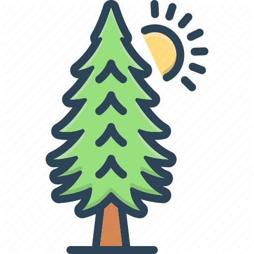 Environment Evergreen Forest Pine Timber Tree Trees Icon Download On Iconfinder Tree Icon Evergreen Icon