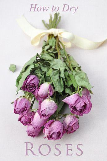 blumenstrauss trocknen three dogs in a garden how to dry roses make rose wreath aber wie rezepte