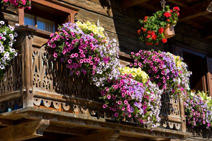 Kwiaty Na Balkon I Taras Container Flowers Summer Flowers Floral Wreath
