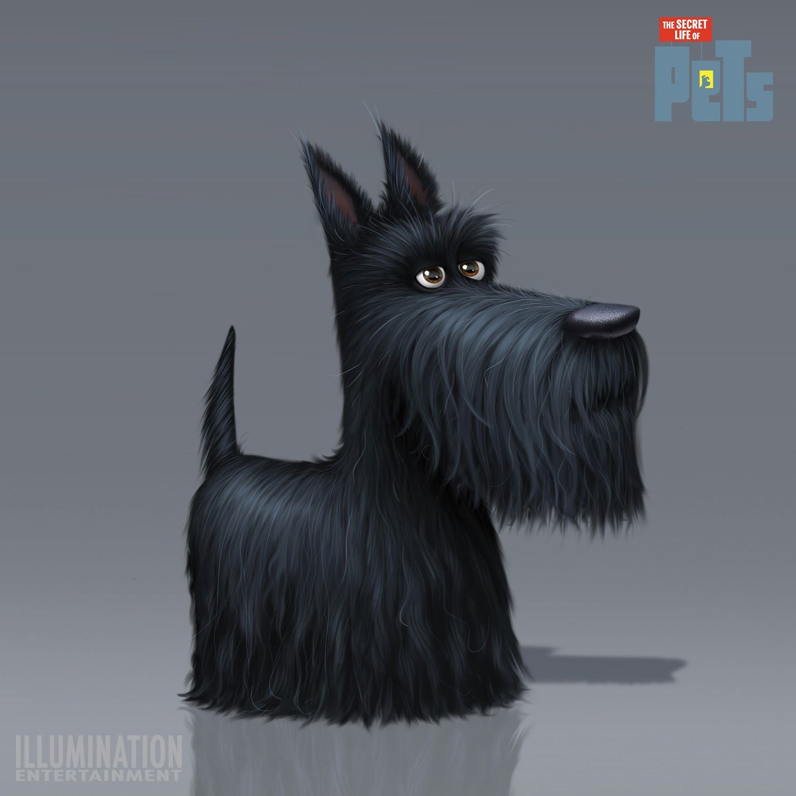 Artes Do Filme The Secret Life Of Pets Por Ludo Gavillet Thecab The Concept Art Blog Scottie Dog Dog Illustration Secret Life Of Pets