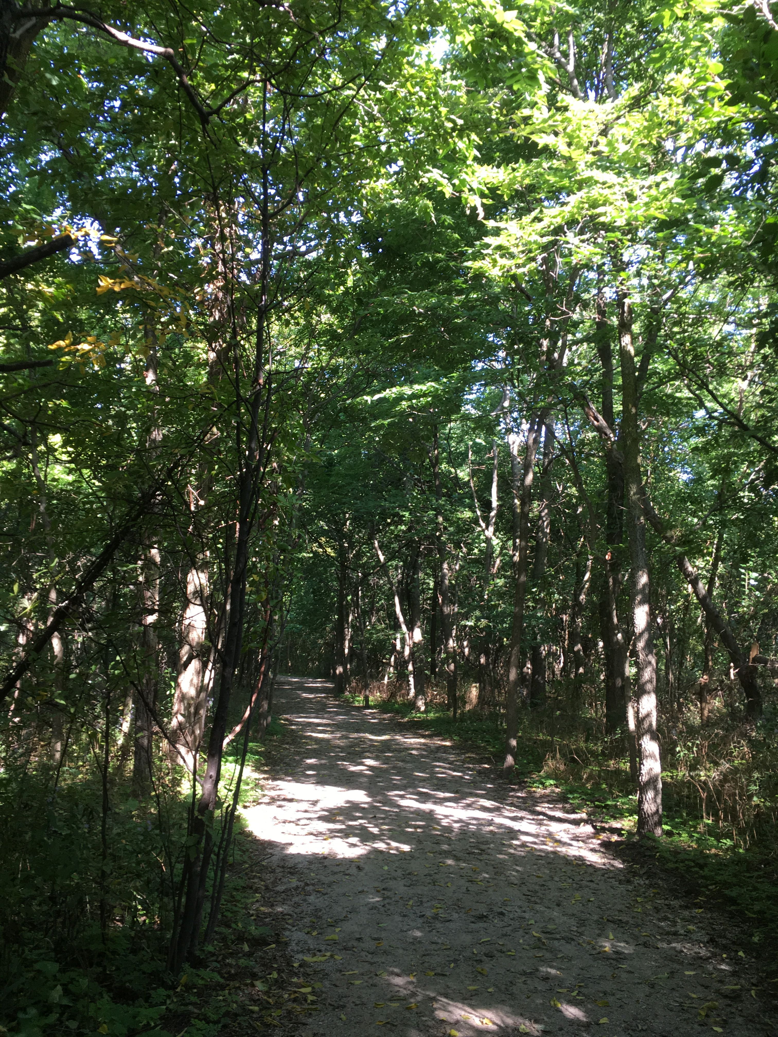 Point Pelee trails