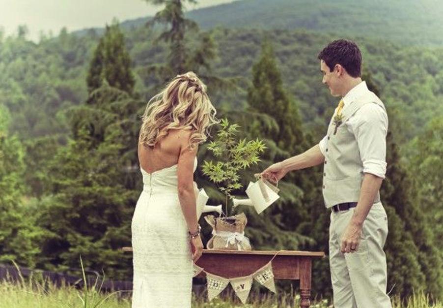 Wedding Ceremony Ideas Unity Candle Alternatives