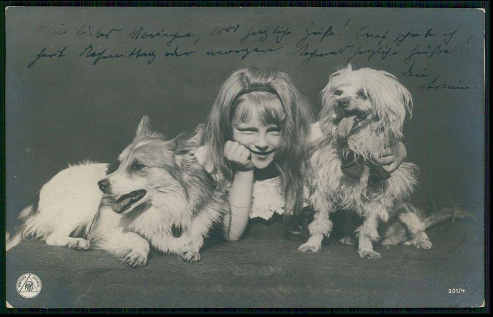 Pretty Blond Child Girl Corgi and Poodle Dog original old 1900s photo postcard