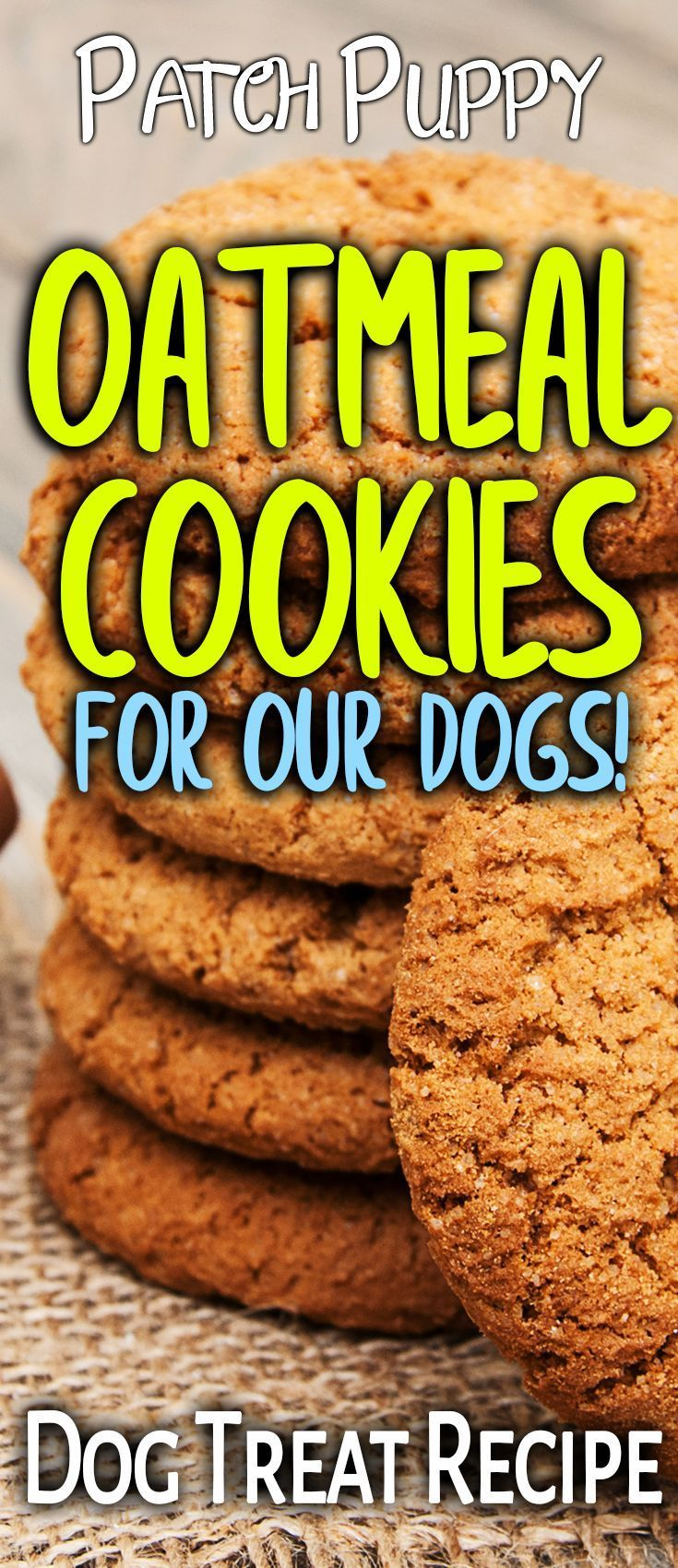 DIY / Homemade Oatmeal Cookies for Dogs Recipe