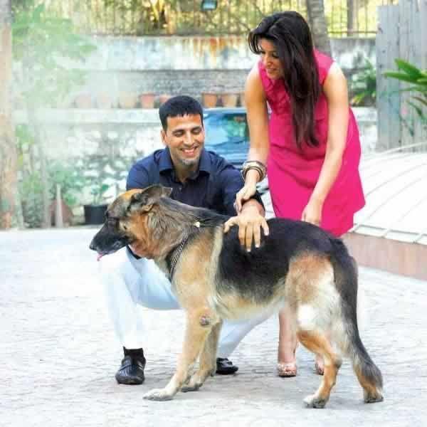 Indian Actor Akshay Kumar Buy New Dog R Aww Akshay Kumar