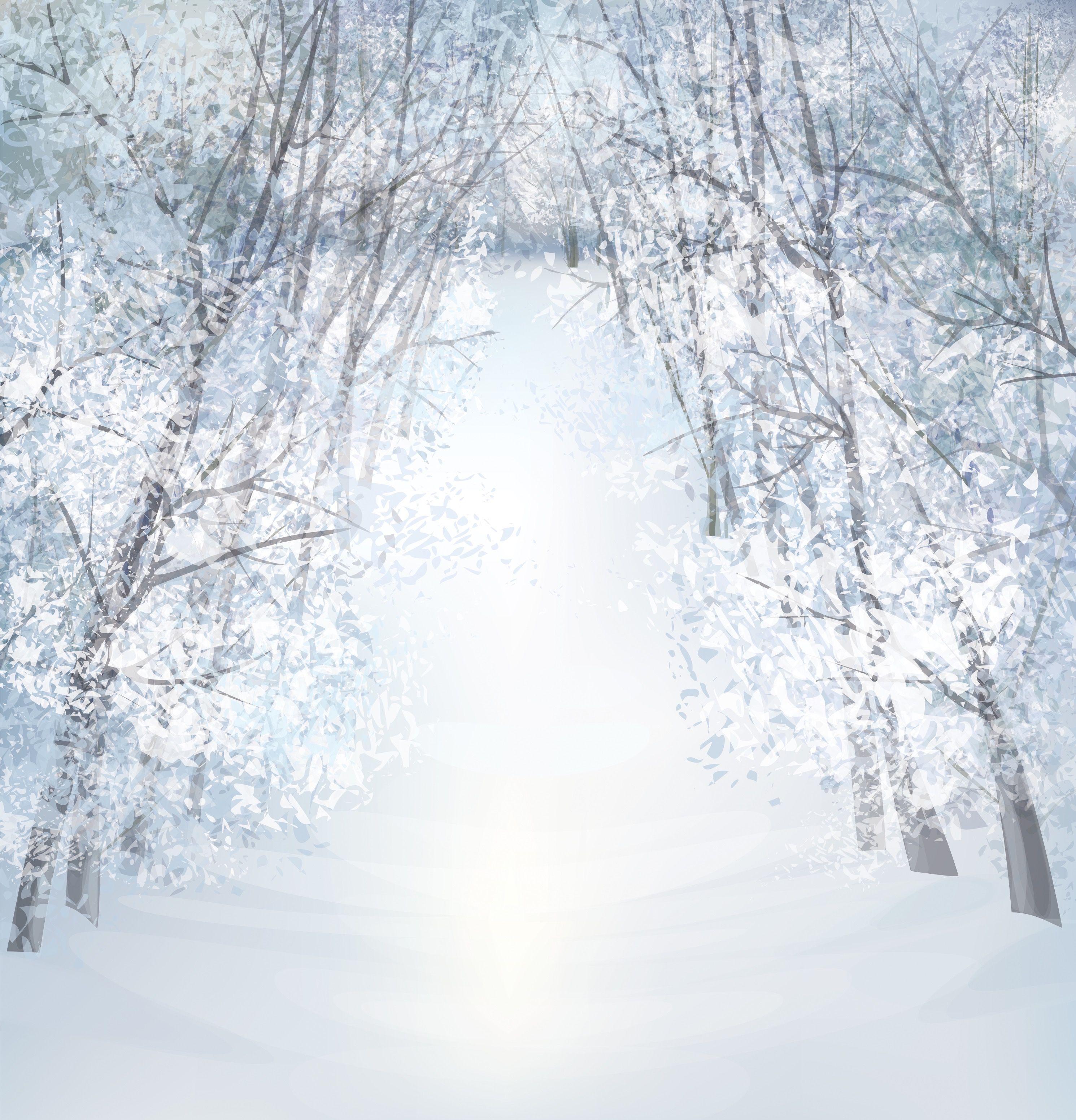 10x10 Winter Trees Christmas Photography Backdrops Christmas Backdrops Background For Photography