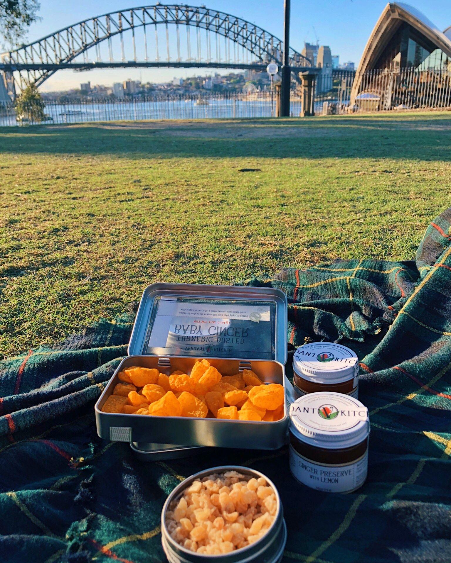 Ginger turmeric snack time snack time snacks food