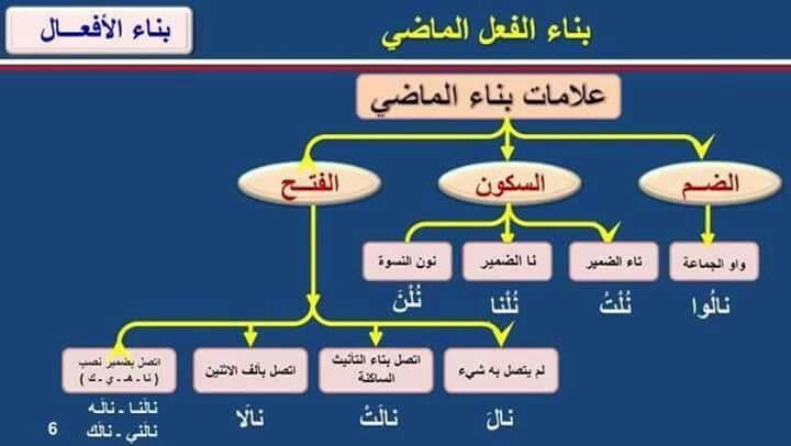 علامات بناء الماضي Arabic Language Learning Arabic Teach Arabic
