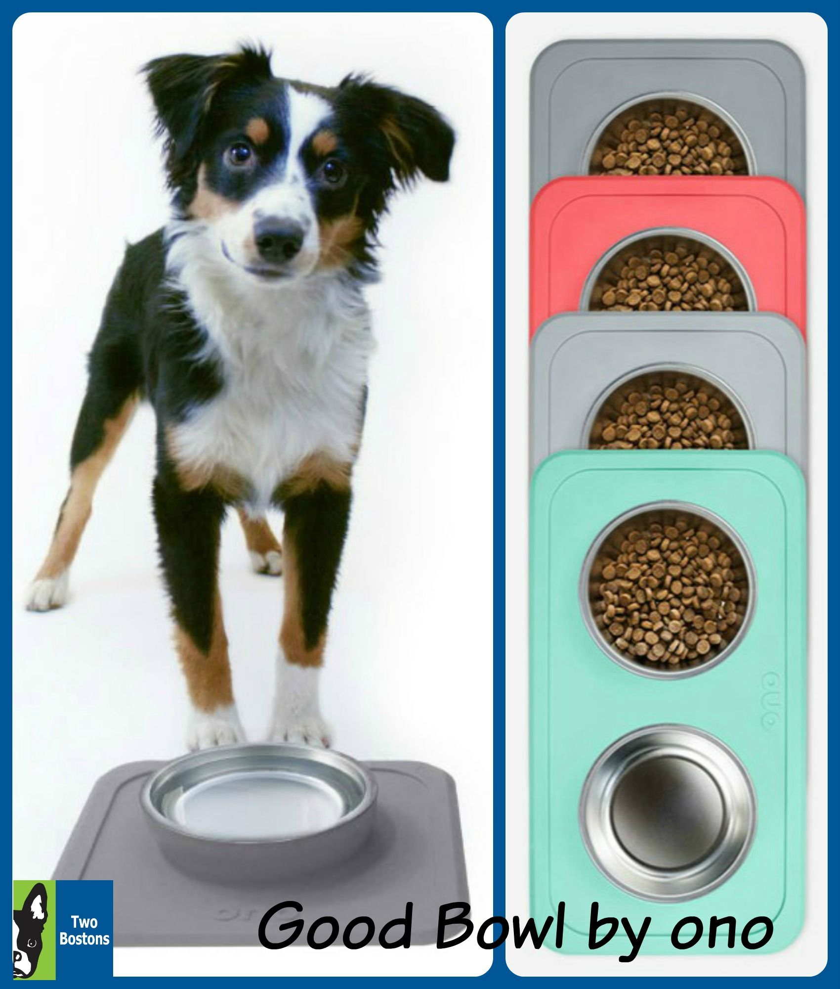 Good Bowl by ono Pet bowls, Bowl, Dog food recipes