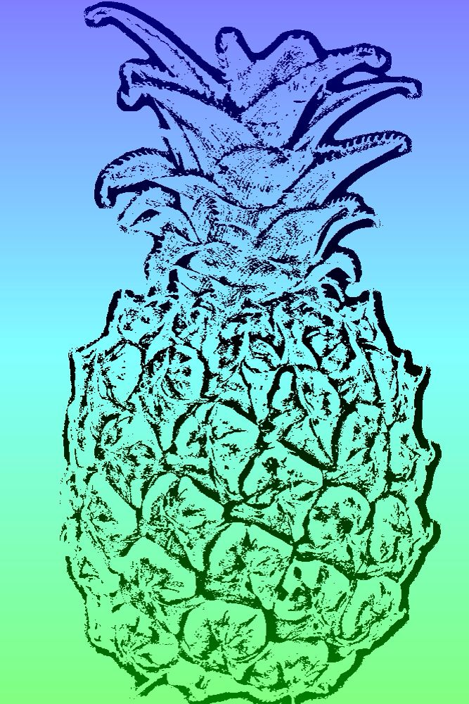 #CrazyCamera pineapple