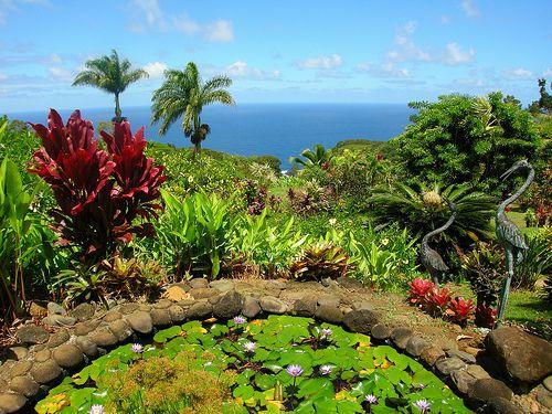 f05807c194bdb94e3c44562bfa4bb351 - Hana Maui Botanical Gardens Hana Hi