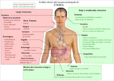 Efectos Del Alcohol En El Cuerpo Wikipedia La Enciclopedia Libre