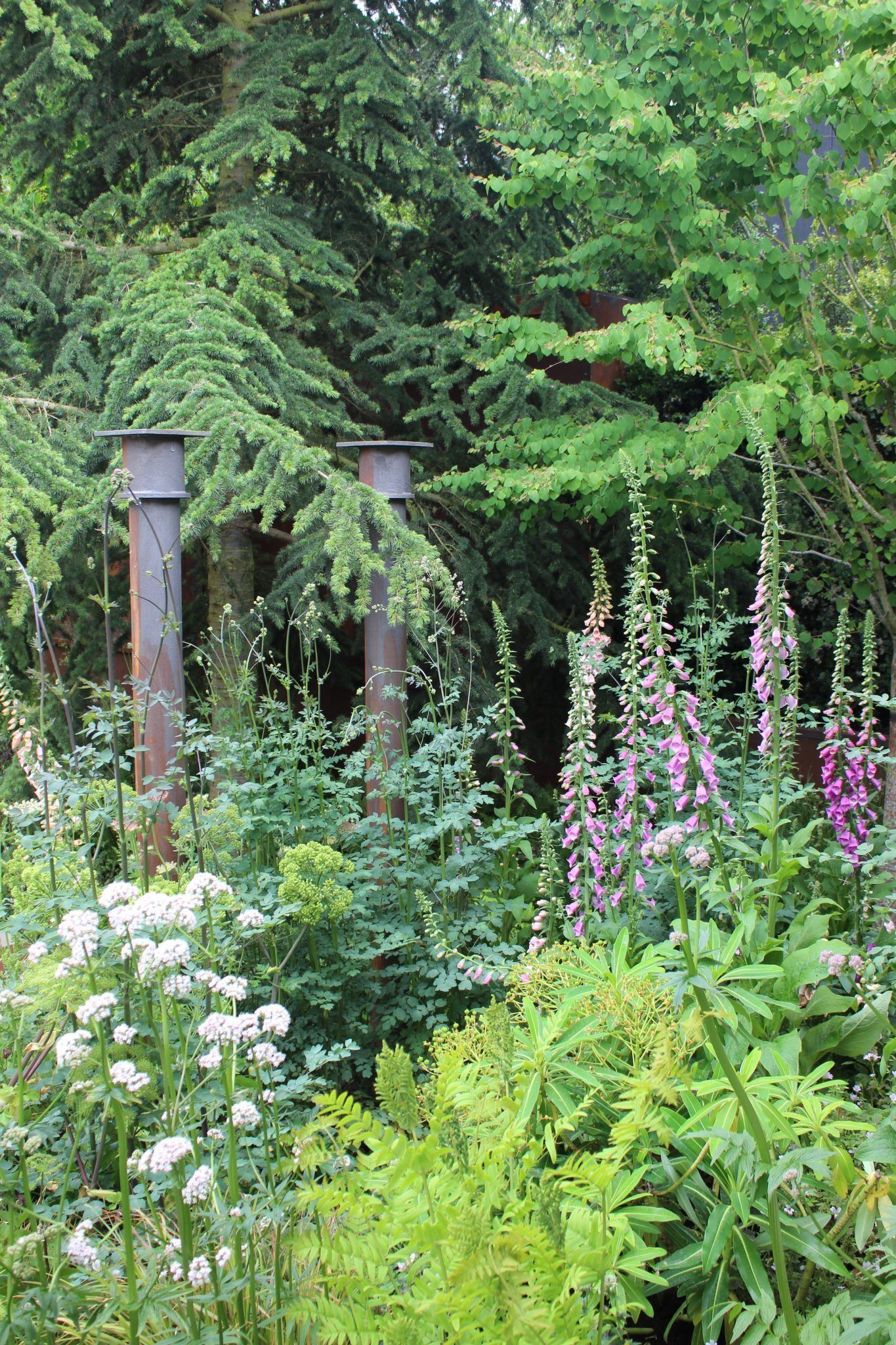 14 Things At Rhs Chelsea Flower Show 2019 Jack Wallington Garden