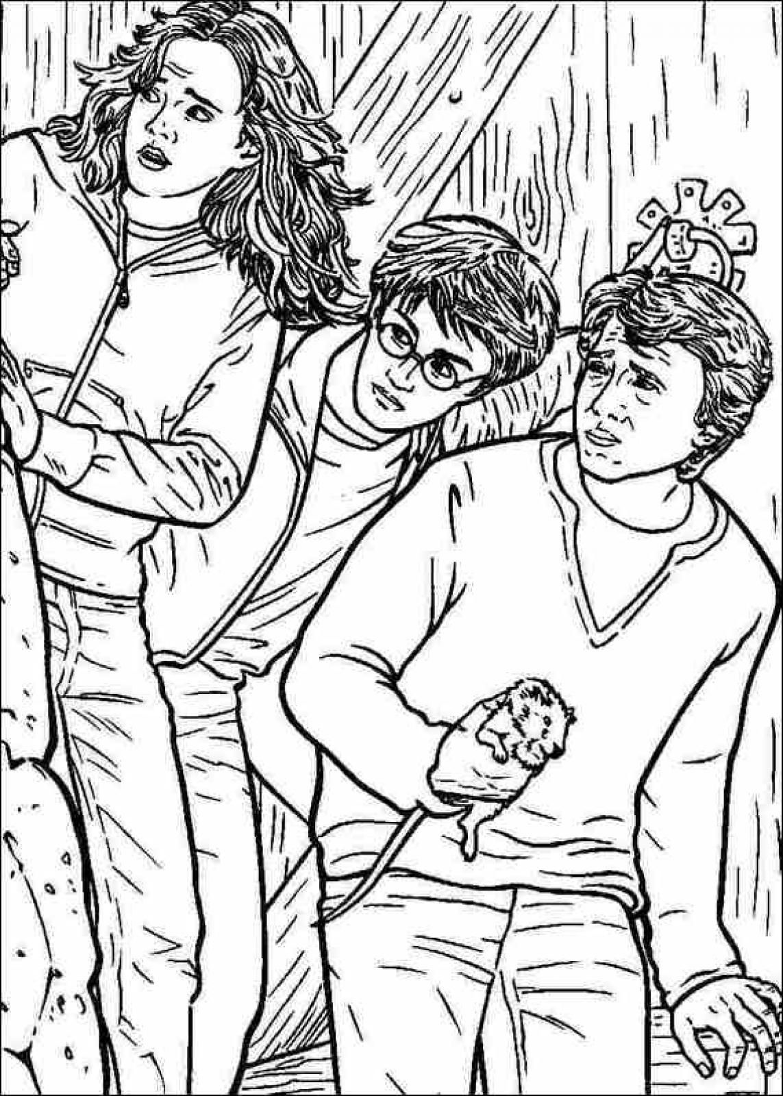 Harry Potter Coloring Pages To Print. Harry Potter Coloring pages and sheets  Find your favorite cartoon coloring picures in the Library harry potter colouring Google Search Pinterest