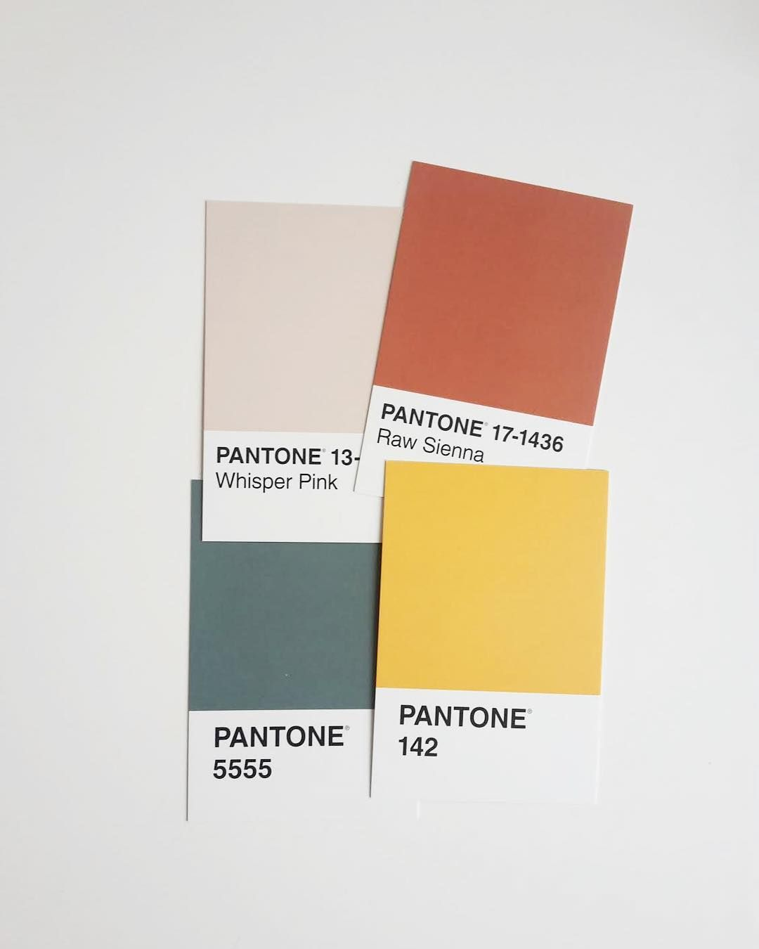 Color Palette Ria Suarez Studio Pinterest Natalia Escano