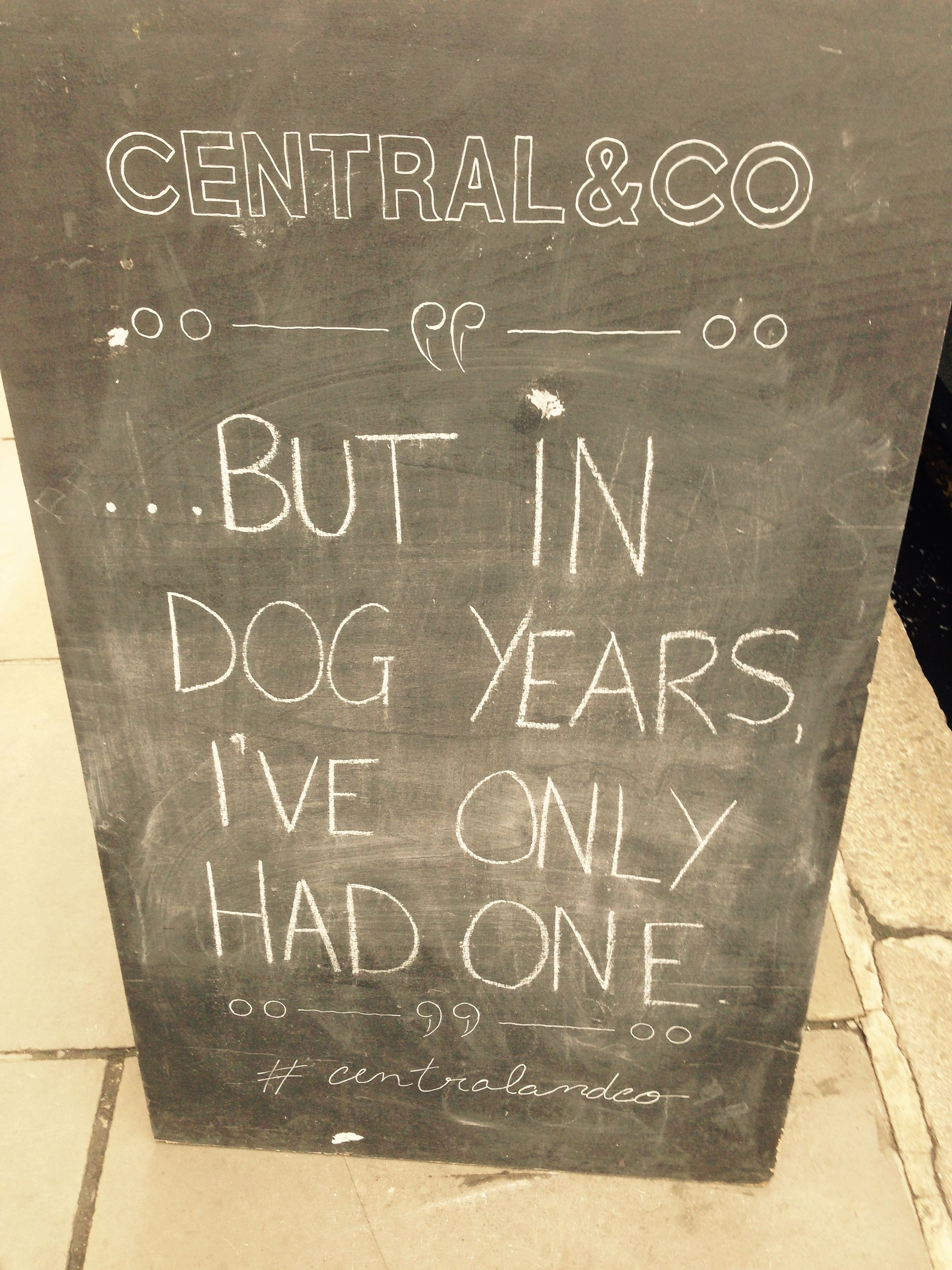 But in Dog Years I've Only Had One - Pub Signs
