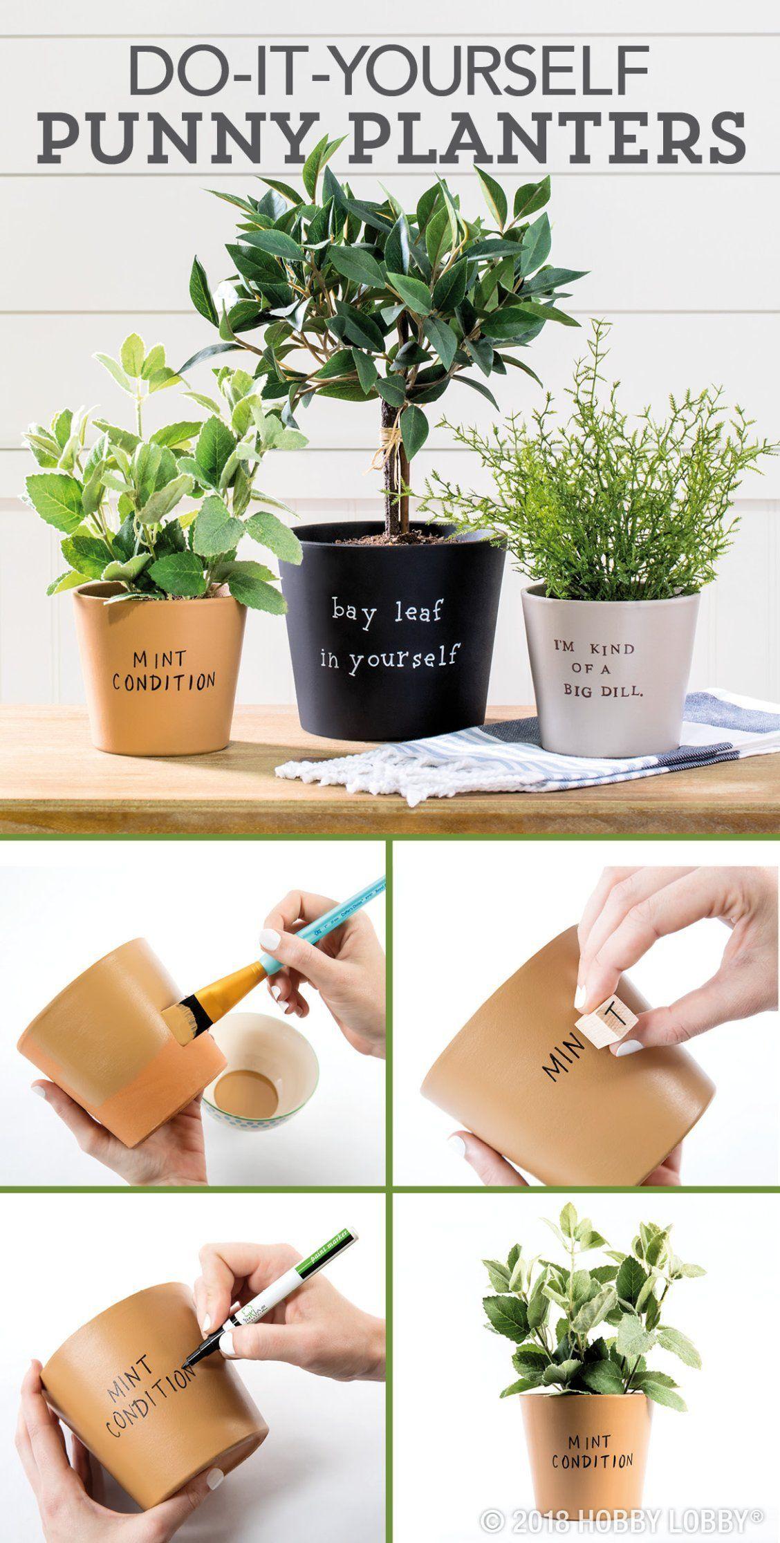 Flowerpots do-it-yourself garden photos, video