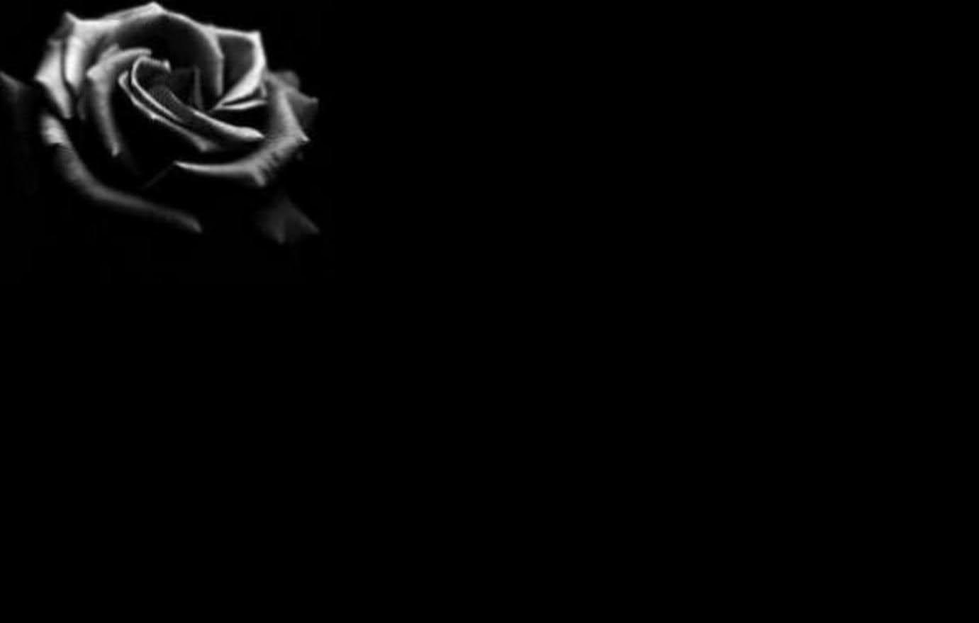 Black rose symbolism wiki fandom powered by wikia hd wallpapers black rose symbolism wiki fandom powered by wikia biocorpaavc Choice Image