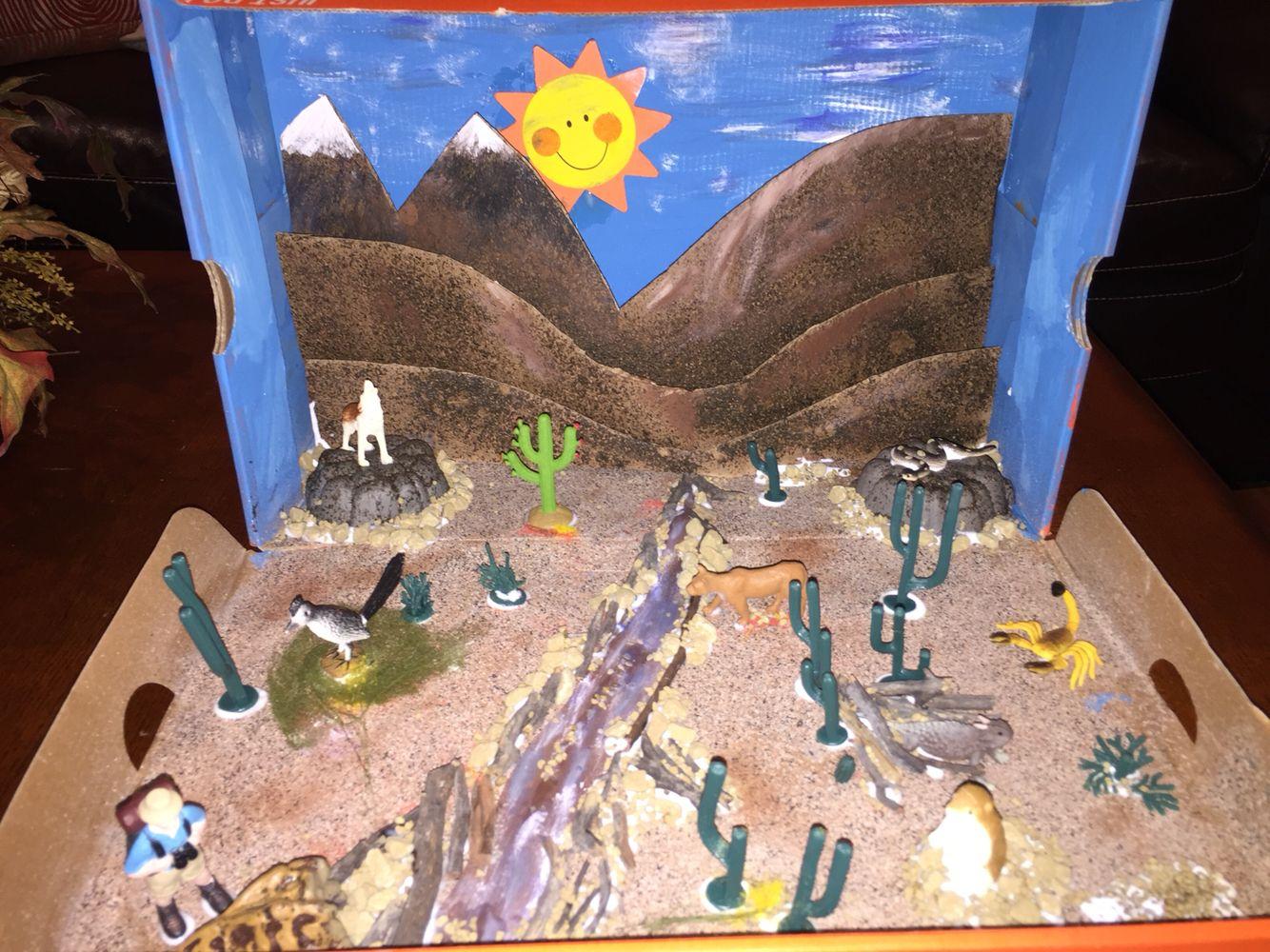 Desert Ecosystem Shadow Box Diorama Ecosystem Desert