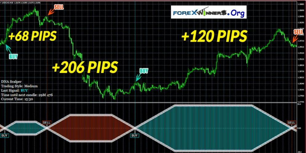 New Dna Scalper System Forex Indicator For Easy Trading Signals