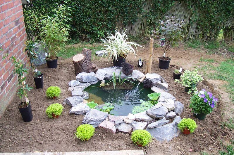 Petit bassin mais pas de fontaine en bambou bassin de - Petite fontaine de jardin pas cher ...