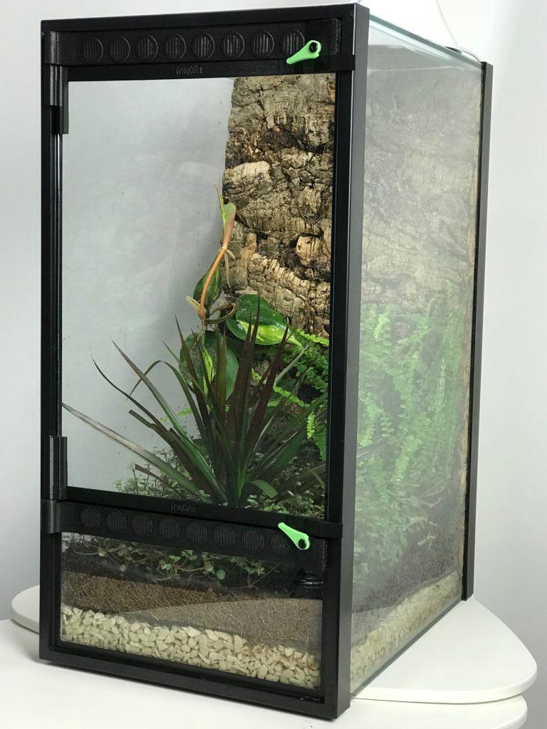 Frogcube u convert your aquarium into a terrarium reptiles