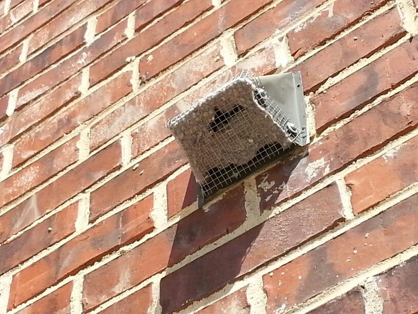 This Is A Dryer Vent Termination Point At The Exterior Wall Dryer Vents Should Not Be Covered By A Screen As It Causes Clog Dryer Vent Home Inspection Inspect