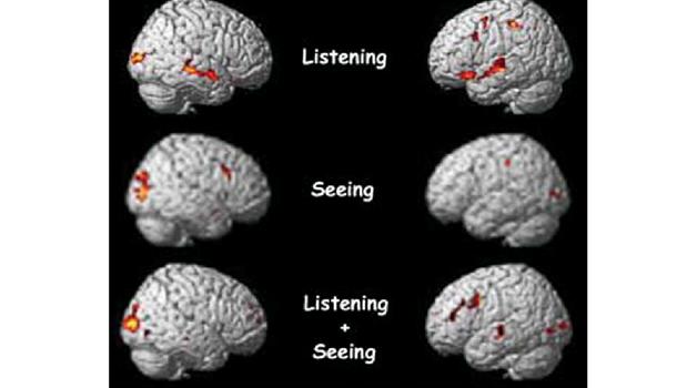 Brain Activity Watching Tv Google Search Brain Activities Environmental Psychology Your Brain