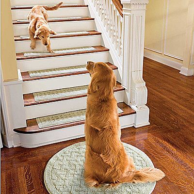 Best Washable Stair Treads Washable Area Rugs Cool Rugs Rugs 400 x 300