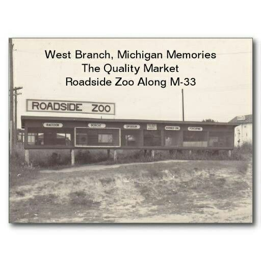 west branch michigan road side zoo west branch michigan west branch vintage postcards pinterest