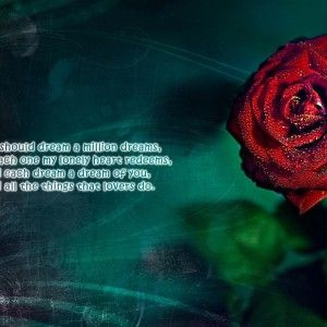 Love-poems-with-flowers-HD-Wallpapers